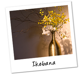 Polaroid japan ikebana