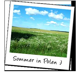 Polaroid polen sommer